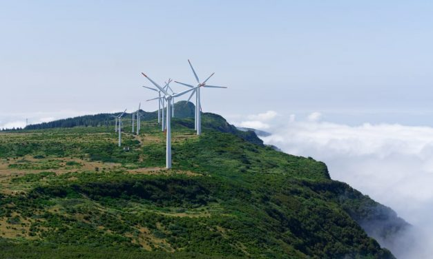 Wind energy could generate 3.3 million jobs worldwide within five years